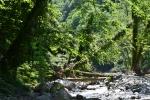 მდინარე და ხიდები